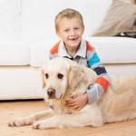 kid safe pet safe pest control