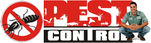 Pest Control Services Gold Coast