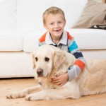 kid safe pet safe pest control Helensvale